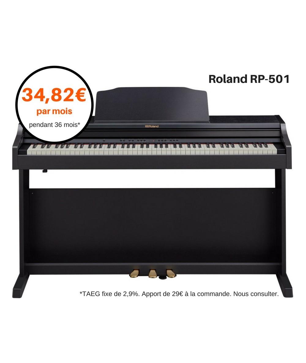 ROLAND RP-501R