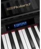 ROLAND GP 607
