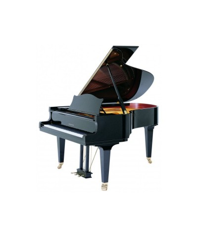 C.BECHSTEIN MP 192